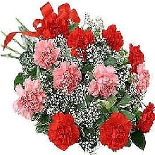 Flowers Bouquet of Red and Pink Carnations